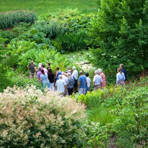 Mount St John Garden Tours at The Carpenters Arms- An image of the garden tour